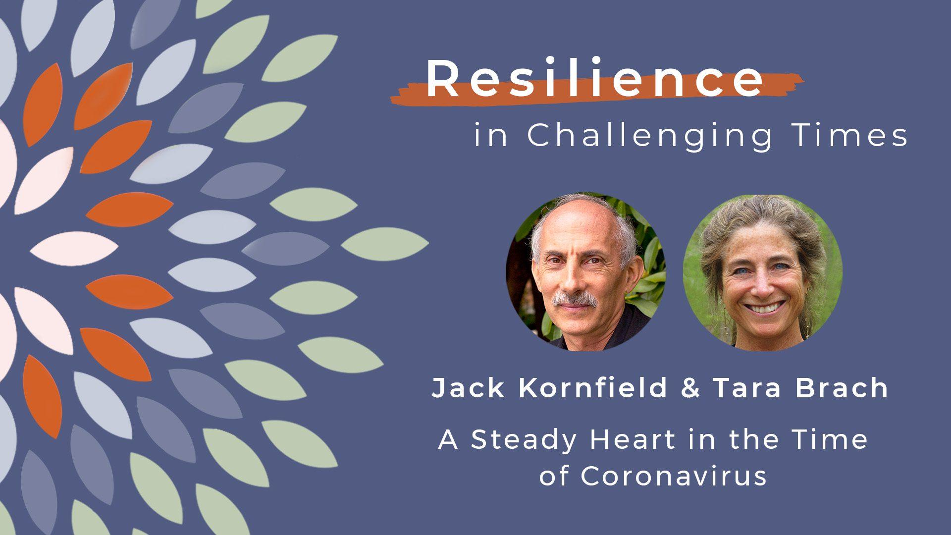 Resilience-social-jack-tara-title-card-2