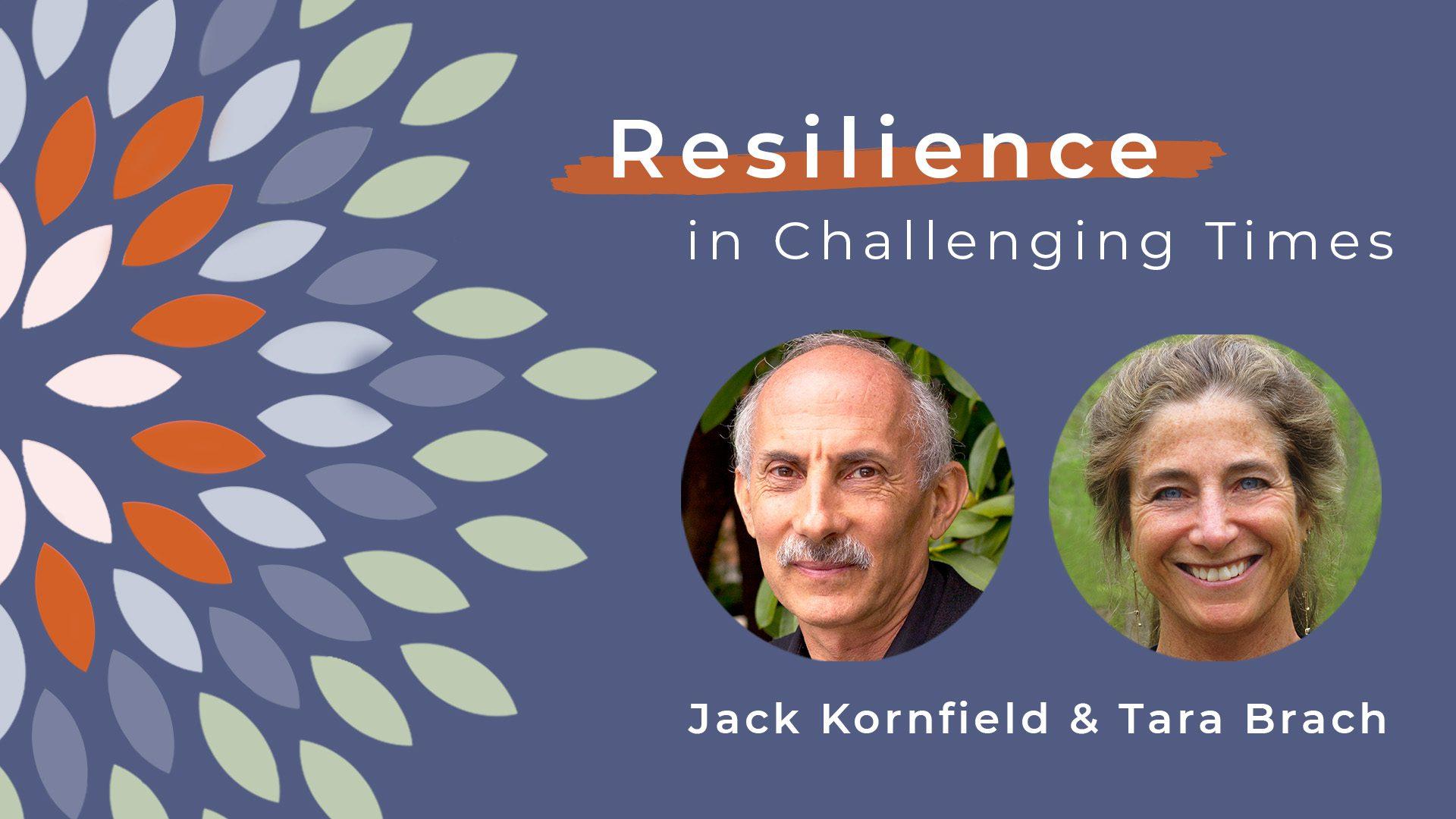 Resilience-social-jack-tara-title-card