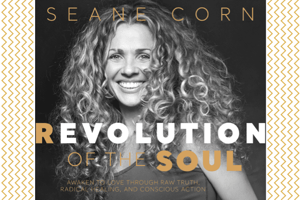 Revolution of the Soul cover