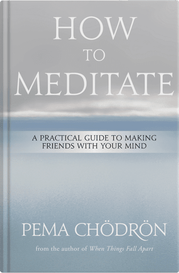 BK02895-How-To-Meditate-mockup
