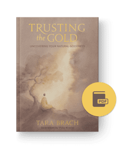 Trusting the Gold PDF excerpt