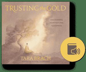 Trusting the Gold audio clip